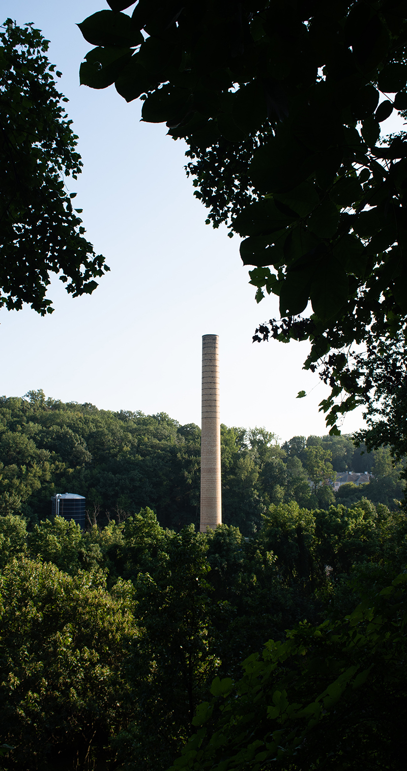 trees and smokestack